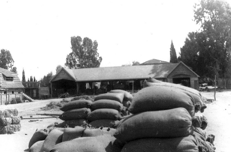 Sacks of Wheat in the Big Courtyard