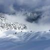 Wind effected, Cascade Mountains, Washington