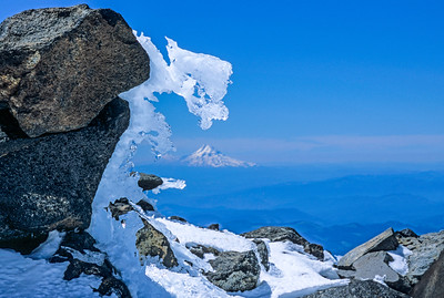 Mt Hood from high on Mt Adams, Washington