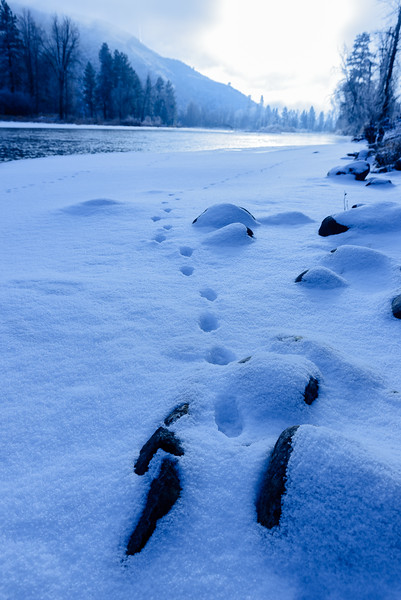 Riverside tracks, Methow Valley, Washington