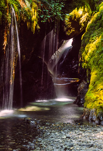 Shafts of sunlight find their way into a canyon on Washington's Olympic Peninsula