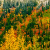 Changing seasons, Cascade Mountains, Washington