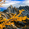Fall larch and Prussik Peak, Enchantments Wilderness, Washingtong