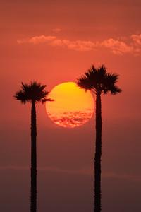 Smoke-tinted sunset