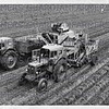 Electronic potato harvester from Root Harvesters.