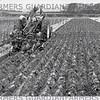 NOV 1989-Ploughing