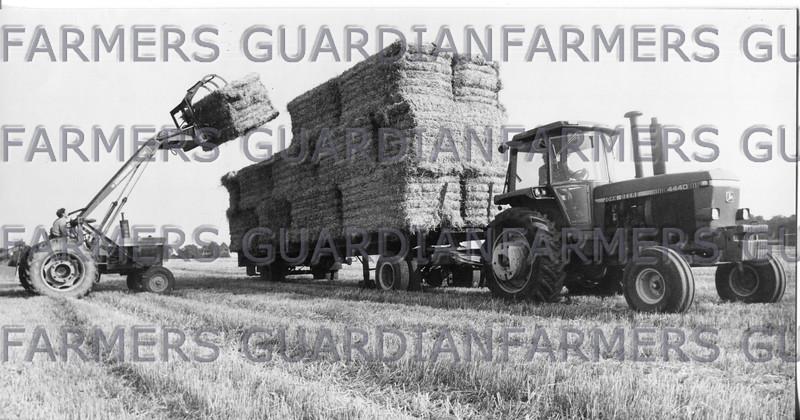 Sept 1981-Farm verdict