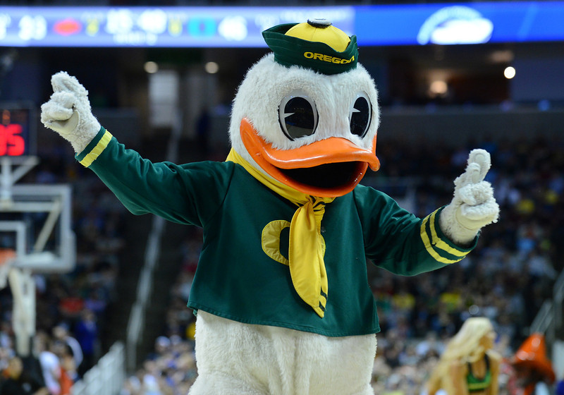 March 21, 2013: Puddles the Oregon Ducks mascot entertains the crowd in a timeout during a game between the Oregon Ducks and the Oklahoma State Cowboys in the second round of the NCAA Division I Men's Basketball Championship at HP Pavilion in San Jose, California.