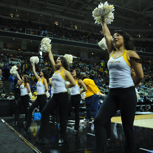 March 23, 2013: California Golden Bears cheerleaders perform during a game between the Syracuse Orange and the California Golden Bears in the third round of the NCAA Division I Men's Basketball Championship at HP Pavilion in San Jose, California.