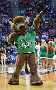 SAN DIEGO, CA - MARCH 18:  Marshall Thundering Herd mascot Marco the Bison performs during a second round game of the Men's NCAA Basketball Tournament against the West Virginia Mountaineers at Viejas Arena in San Diego, California.  (Photo by Sam Wasson)
