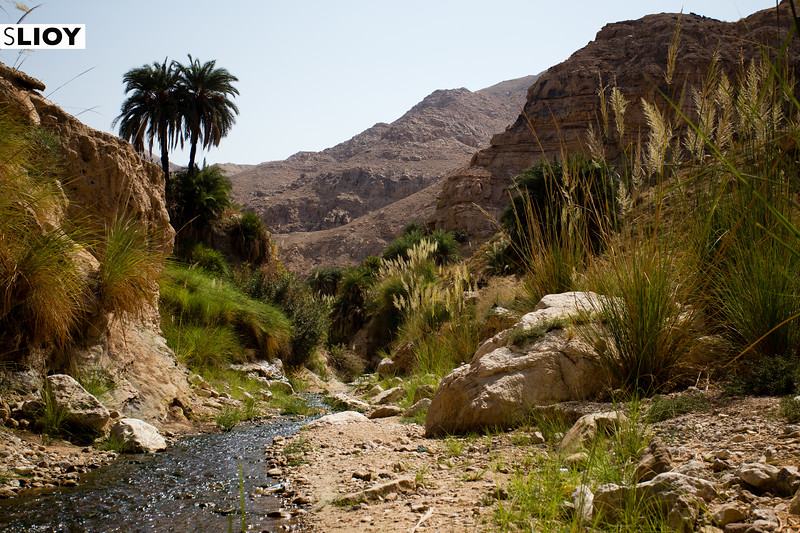 Hiking the Wadi Weida'a Waterfall Trail on Jordan's Dead Sea Coast.
