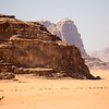 Camels on the move in Wadi Rum, Jordan.