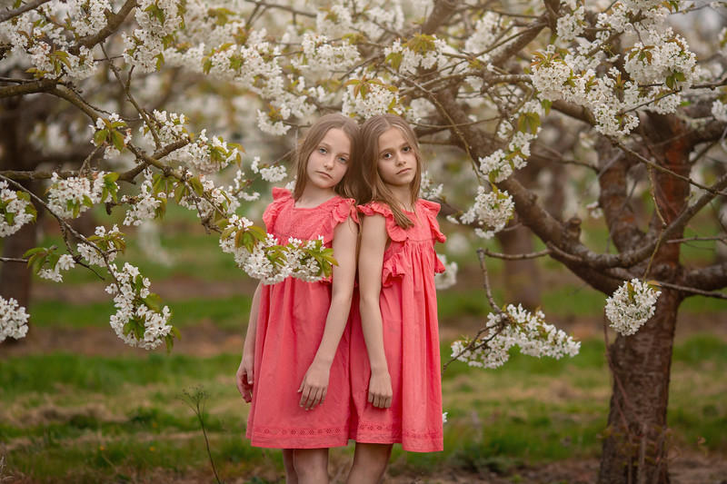 2019 - Twins in Cherry Blossom 034