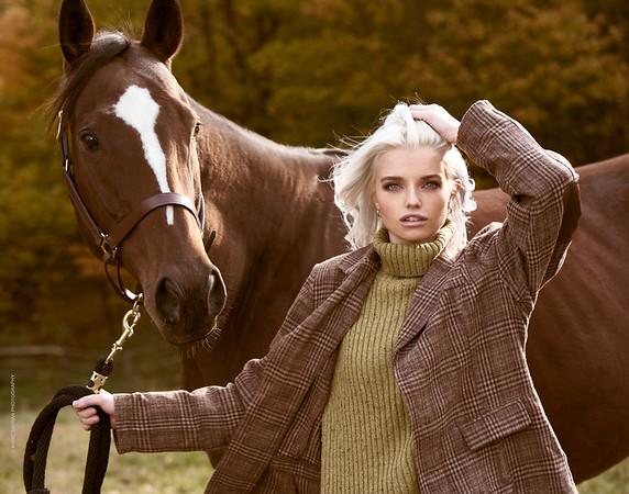 Outdoors, Achilles Horse, Elbridge