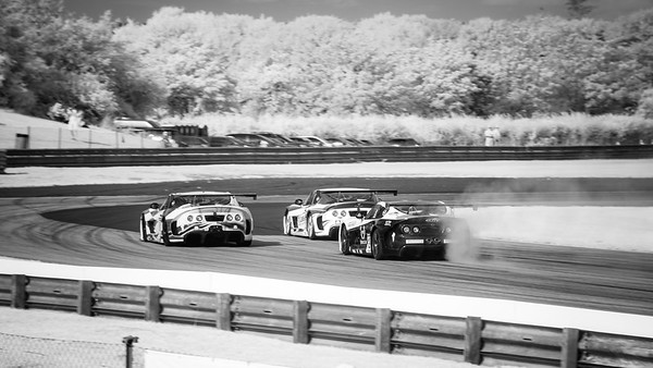 20190817 - Infrared Ginettas at Campbell Corner