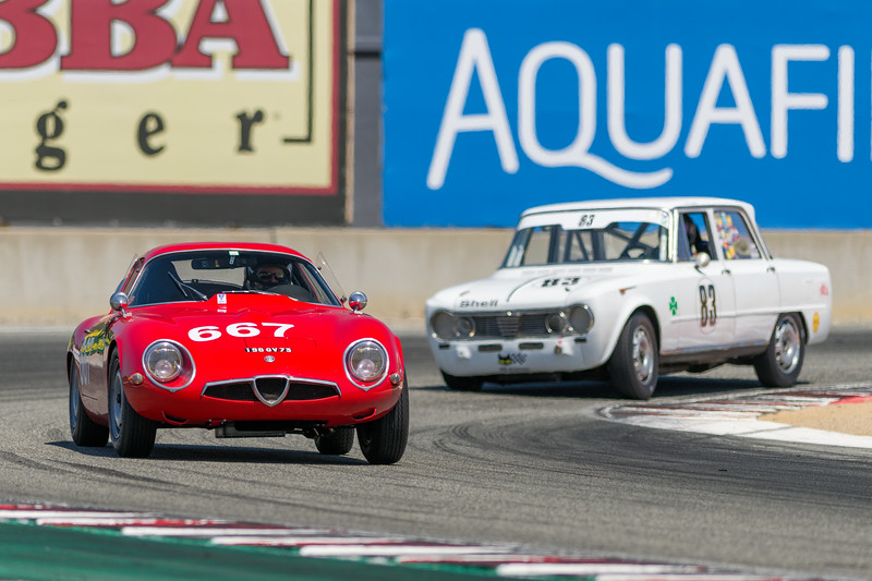 1965 Alfa Romeo TZ1 driven by Ned Spieker
