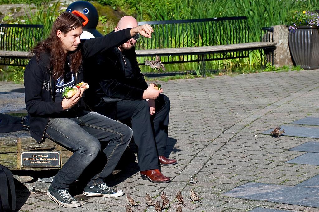 Pre-listening at the Bergen Aquarium