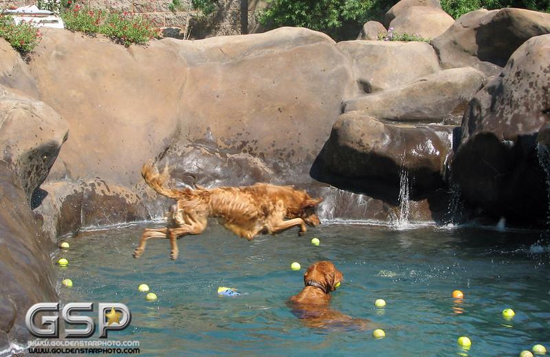 Golden Swim Party 032