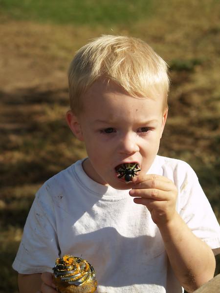 Harvest Romp 08 292