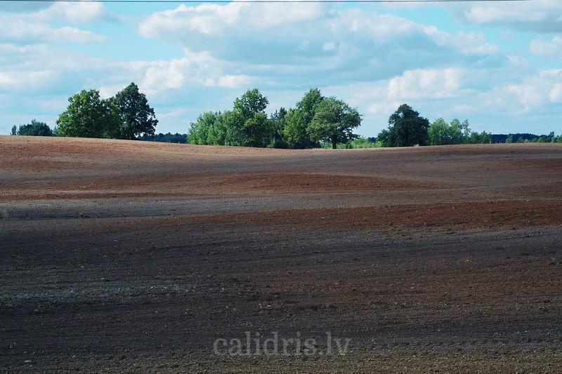 Plowed field in Sēlija