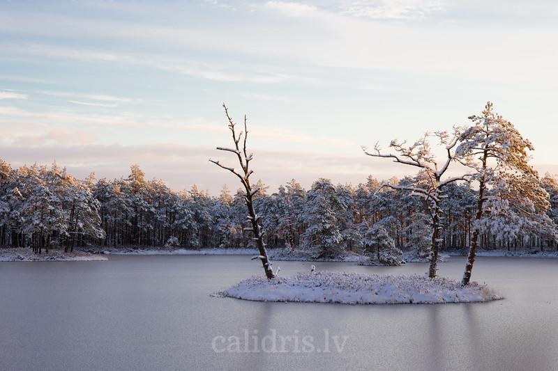 Ziemas saullēkts pie ezera Cernas tīrelī