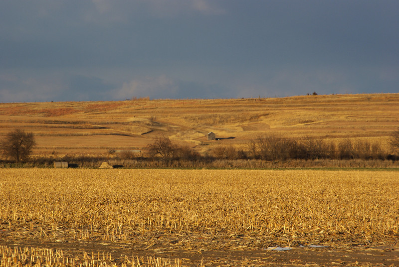 Pastures, Elm Creek, NE (Nov 2007)