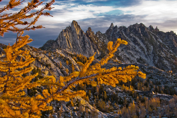 Fall larch and Prussik Peak, Enchantments Wilderness, Washington