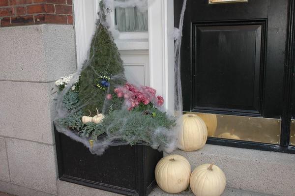 BostonStreets0083