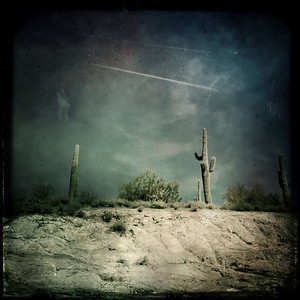 I awoke in a strange desert land. I could see a ridge before me with a few lone cactus growing on top. The light was filtering through clouds that were doing their best to block out the sun. Rain seemed imminent.