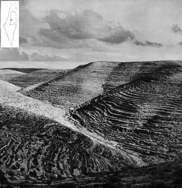 THE MOUNTAINS OF JUDEA