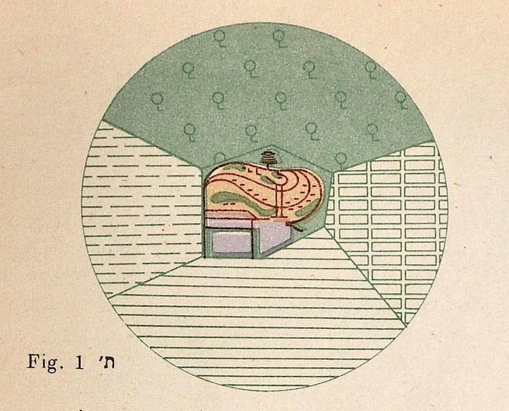 Fig. 1. Kvutza