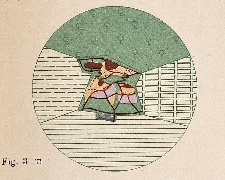 Fig. 3. Large Kibbutz