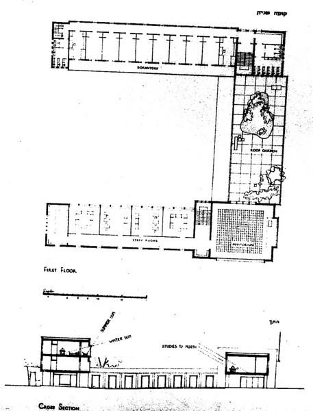 First Floor Plan and Cross Section