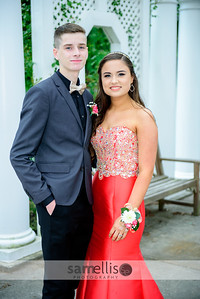 DHSprom17-3666