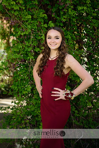 DHSprom18-8088
