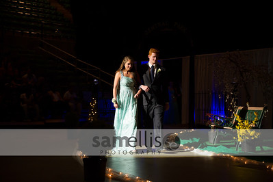DHSProm2014-9760