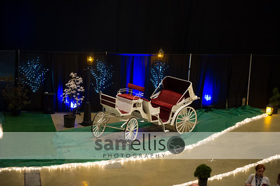 DHSProm2014-9735