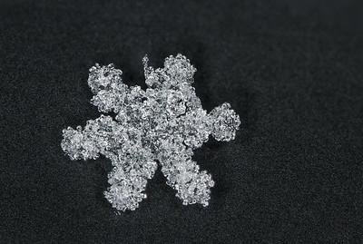Snowflake Focus Stack #1
