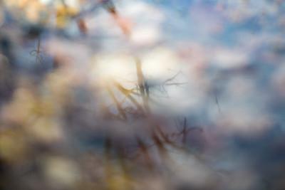 Edge Reflections