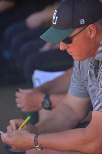 TUCSON, AZ - MAY 28:  Head coach Glenn Moore of the Baylor Bears takes notes before game three of the NCAA Div. I Super Regional against the Arizona Wildcats on May 26, 2017 at Hillenbrand Stadium in Tucson, Arizona.  (Photo by Sam Wasson)