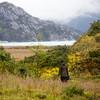 Hiking back from the Amalia Glacier in Chlean Patagonia's Bernardo O'Higgins National Park.
