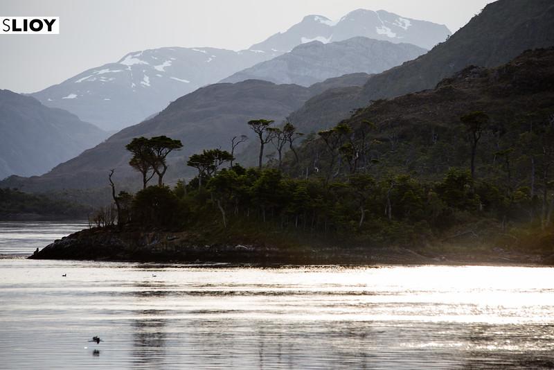 Cruising the fjords of Patagonia in Chile's Bernardo O'Higgins National Park.
