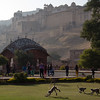 Monkeys playing  below the Amber Fort in Jaipur.