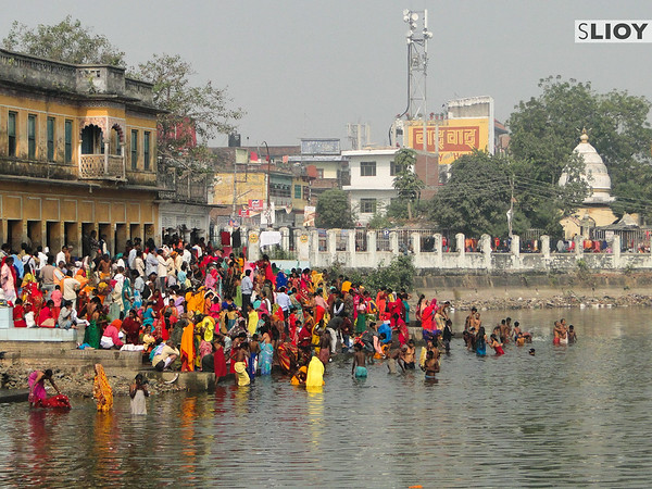 Ritual Bathing during the Sita Bibiha Festival in Janakpur, Nepal