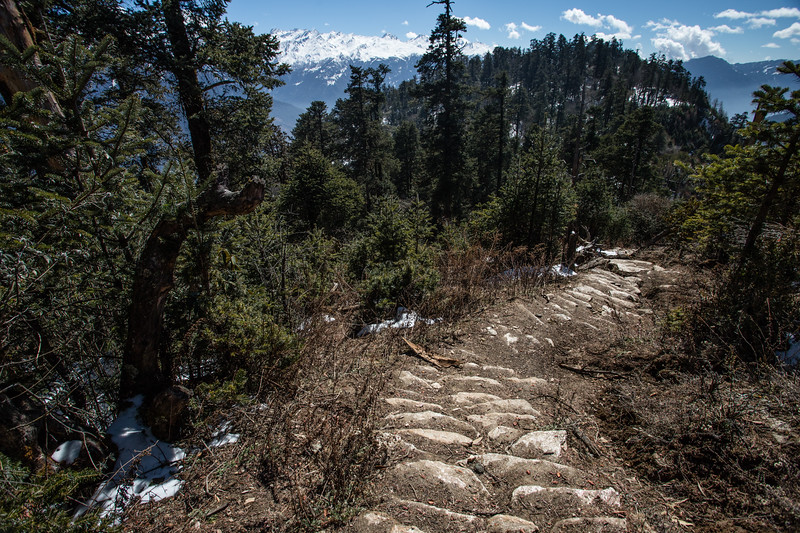 Hiking to a viewpoint and snowy mountain peaks along the Tamang Heritage Trail in Nepal.
