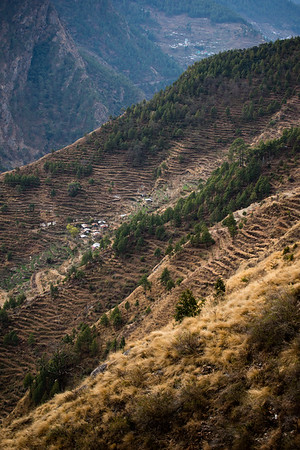 Terraced hillsides above the village of Syarbrubesi at the junction of the Langtang and Tamang Heritage Trail hikes in Nepal.