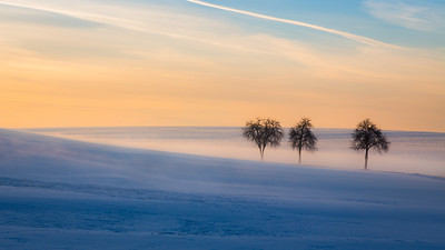 Winter landscape / Hüfingen, Germany