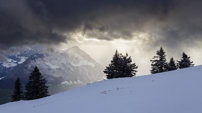 After the storm / Rigi Kaltbad, Switzerland