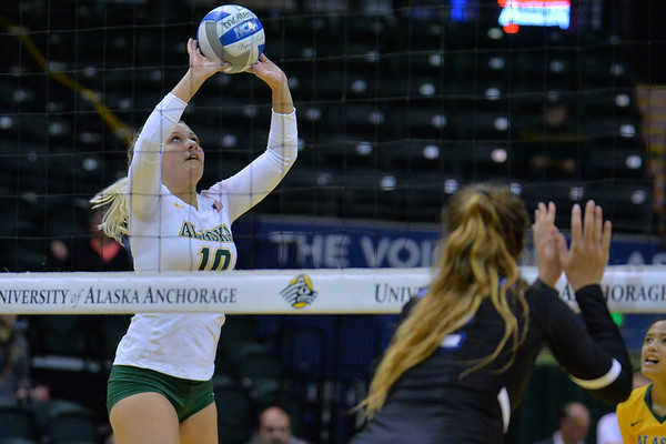 ANCHORAGE, AK - SEPTEMBER 9:  Madison Fisher #10 of the Alaska Anchorage Seawolves sets a ball in a match between the Alaska Anchorage Seawolves and the Cal State San Bernardino Coyotes at the Alaska Airlines Center in Anchorage, Alaska. The Coyotes won 3-2.  (Photo by Sam Wasson)