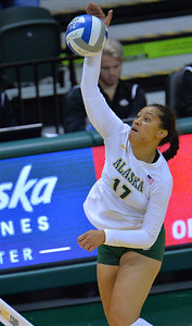 ANCHORAGE, AK - SEPTEMBER 9:  Diana Fa'amausili #17 of the Alaska Anchorage Seawolves takes a swing in a match between the Alaska Anchorage Seawolves and the Cal State San Bernardino Coyotes at the Alaska Airlines Center in Anchorage, Alaska. The Coyotes won 3-2.  (Photo by Sam Wasson)